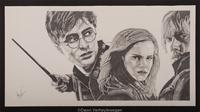 Harry Potter Characters Drawn
